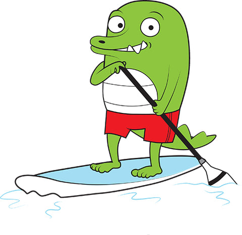 Stand Up Paddle Board Image