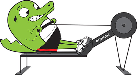 Rower Big Crocodile