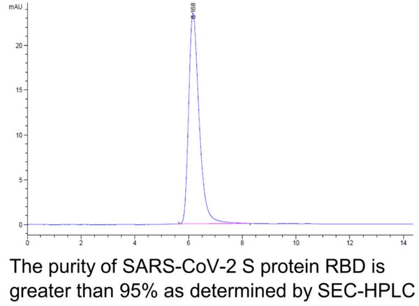 Recombinant SARS-CoV-2 Spike RBD