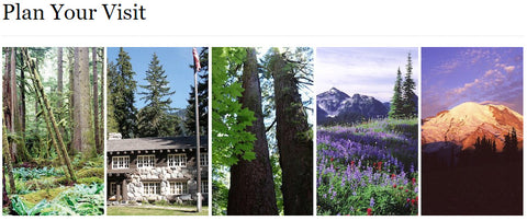 Plan your visit to Mt. Rainier National Park