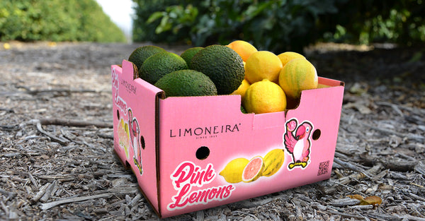 Fresh Fun - Pink Lemons & Avocados