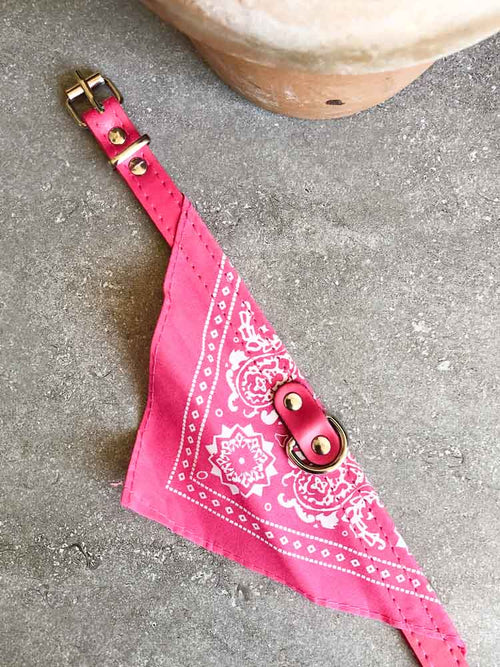 Small Dog Bandana Collar