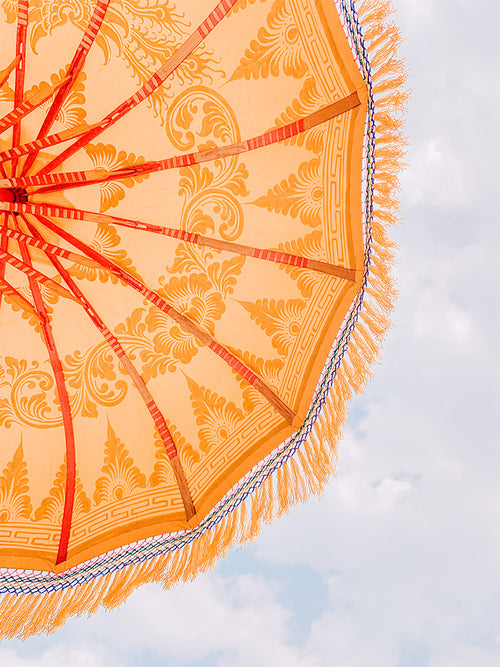 Marigold Umbrella India Photo Print