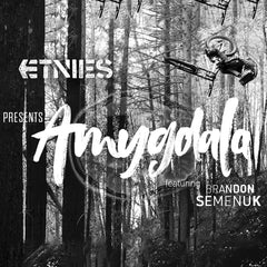 Etnies Action Sports Shoes Presents Amygdala Featuring Brandon Semenuk