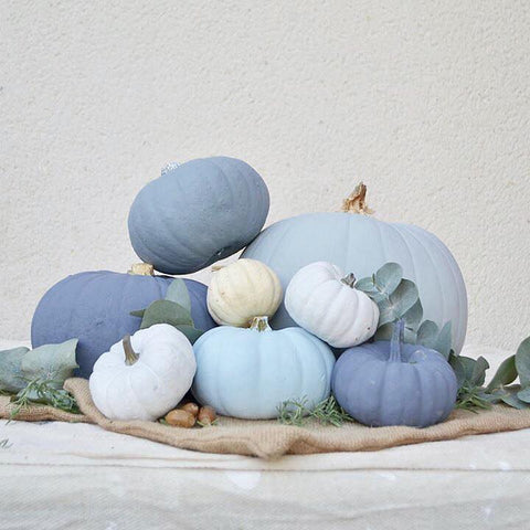 Stunning autentico chalk painted pumpkins in blue and white