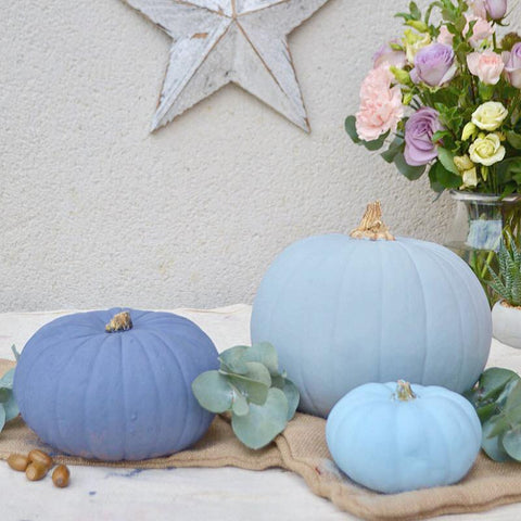 soft blue autentico chalk painted pumpkins