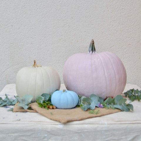 beautiful pastel chalk painted pumpkins in pink, cream and light blue
