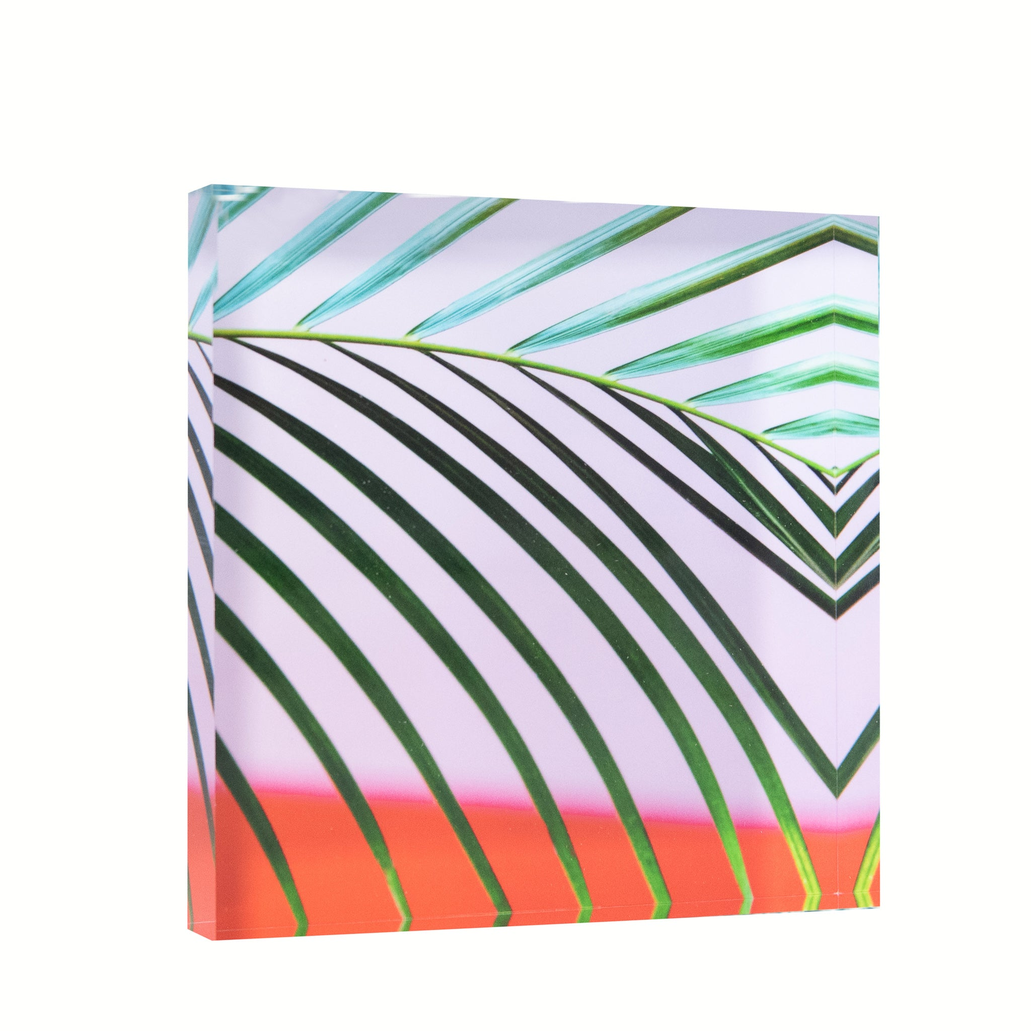 Lucite Block : Color Cuban Palms