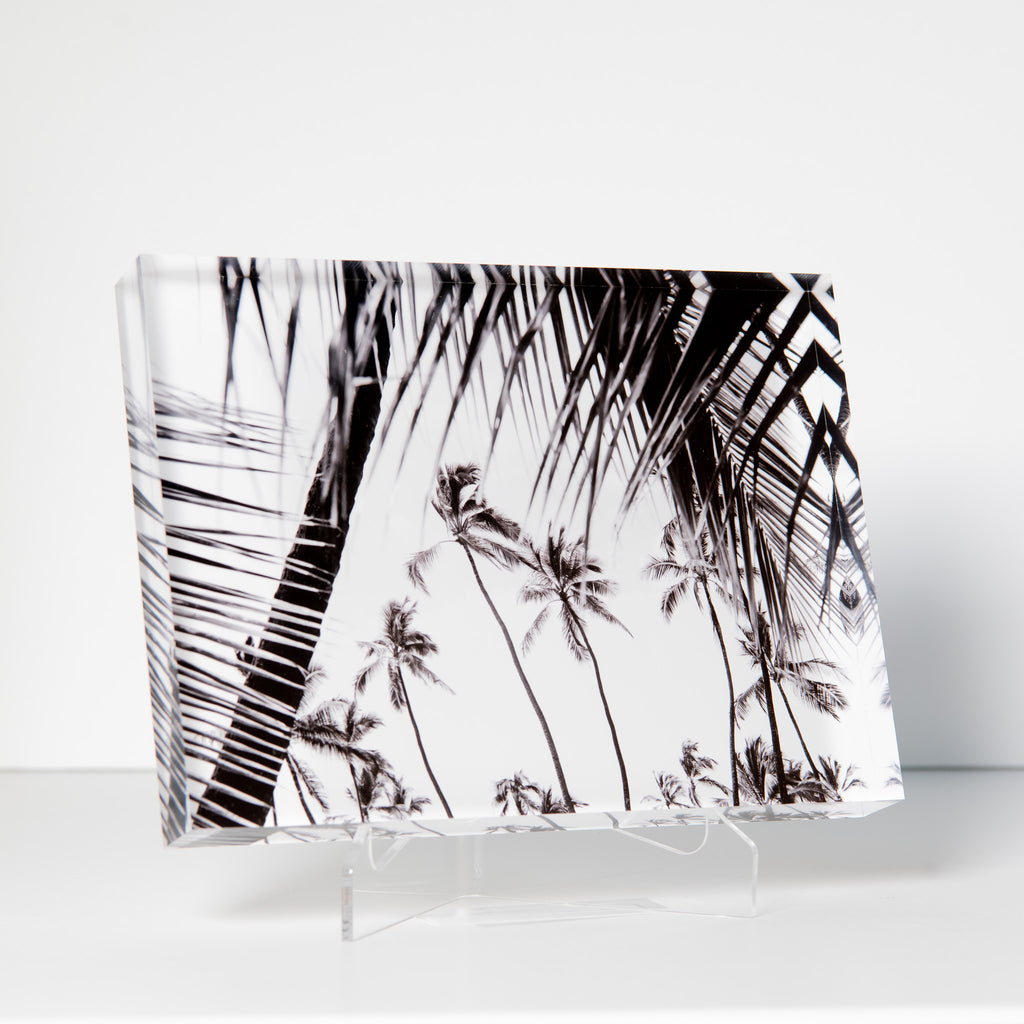 Lucite Block : Hawaiian Palms 2