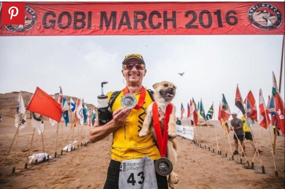 Travel Wags Heroes - Dion Leonard and the little stray Gobi