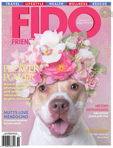 Travel Wags As Seen In Fido Magazine