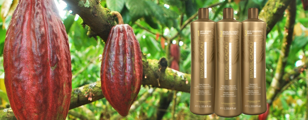 Brasil Cacau Keratin Hair Treatment Ingredients