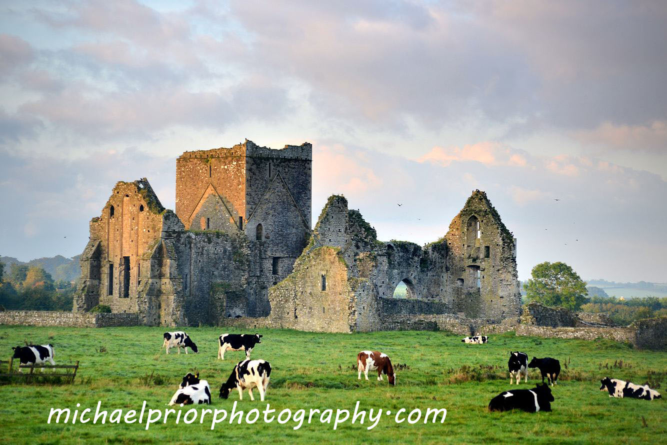 Hore Abbey In Cashel Co Tipperary