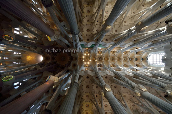Soaring Pillars - Sagrada Familia - Michael Prior Photography