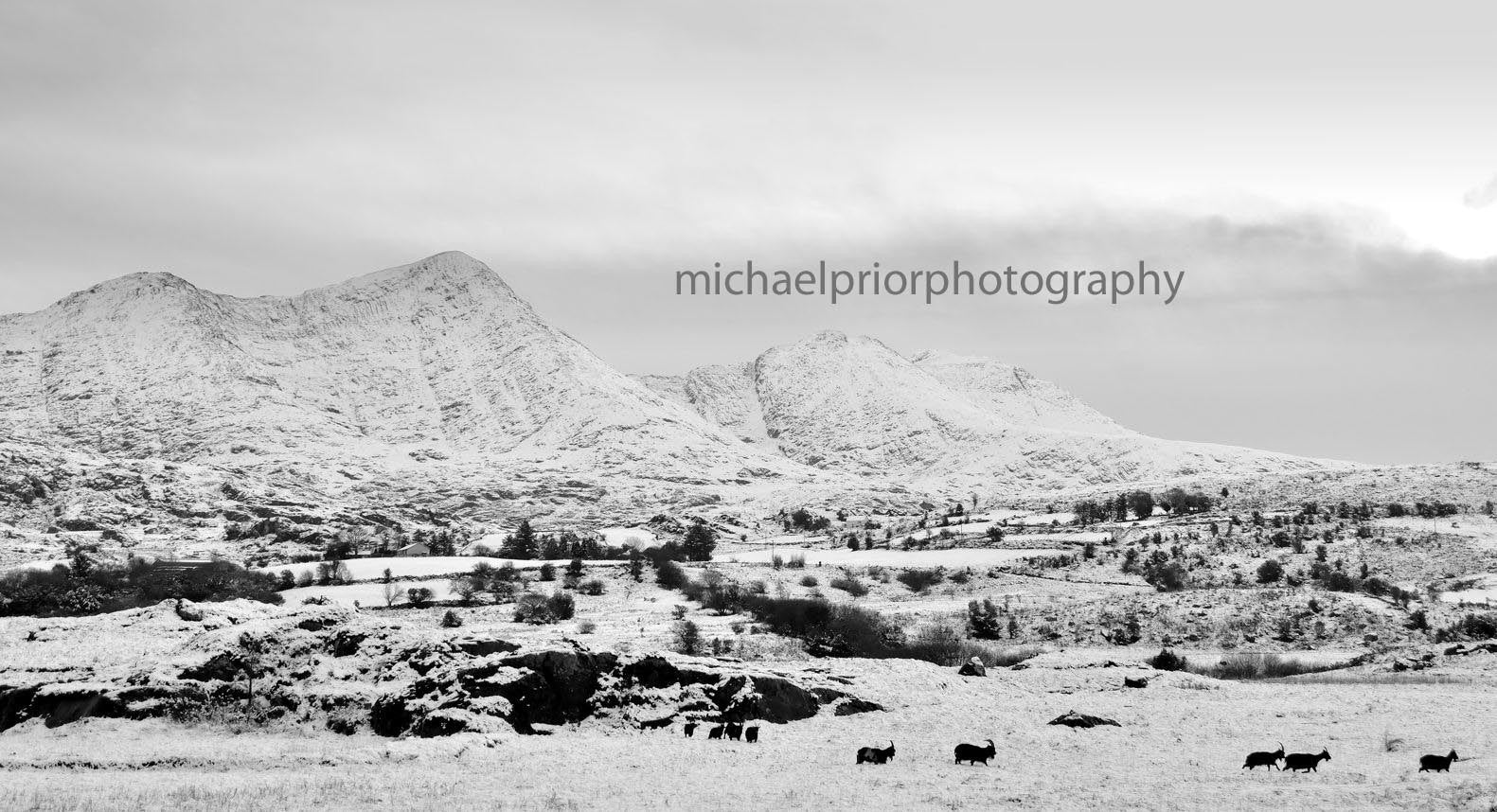 The Bridia Valley Under Snow - Michael Prior Photography