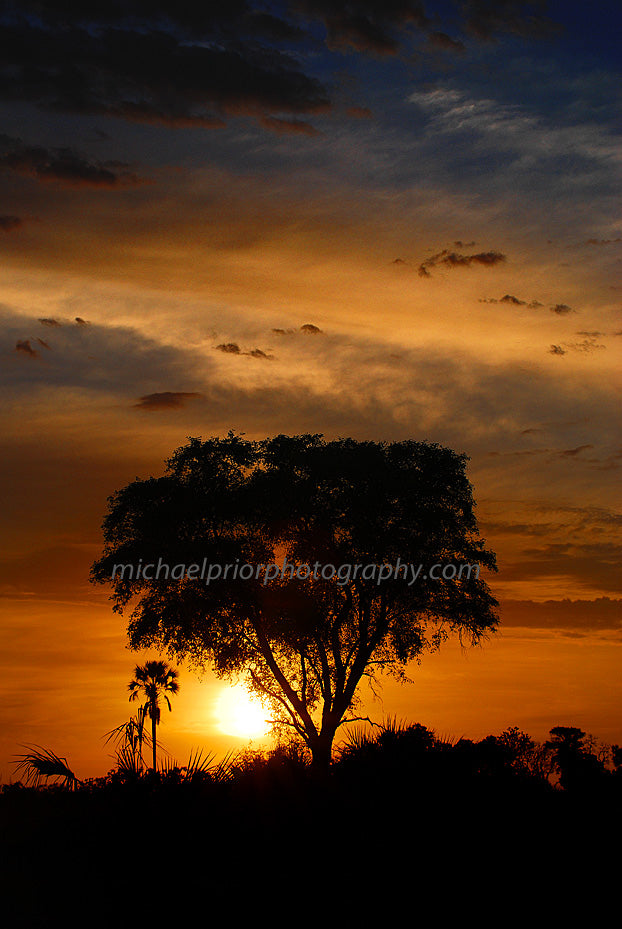 African Sunset - Michael Prior Photography