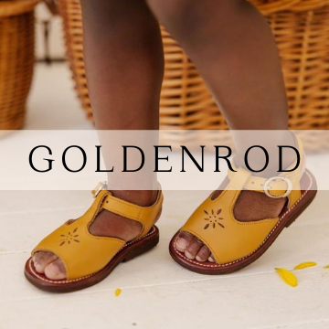 Goldenrod Leather Shoes