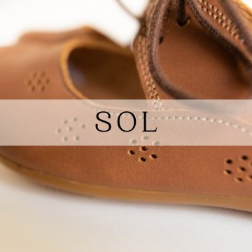Sol Leather Shoes