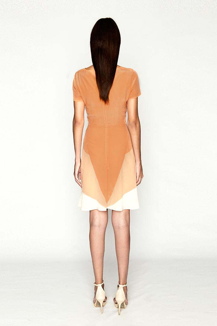 Ginger Orange Silk Dress - Shopyte