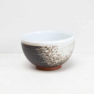 Splash Noodle Bowl