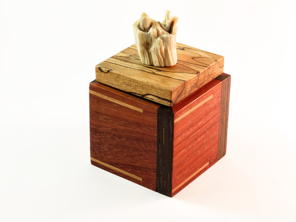 "One-of-a-kind handmade wooden box of padauk, spalted beech, wenge, with solid cherry inlay. Handle made from actual bison's tooth. About 2 7/8"" square x 3 1/4""H."