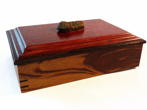 handmade exotic wood box with trilobite handle