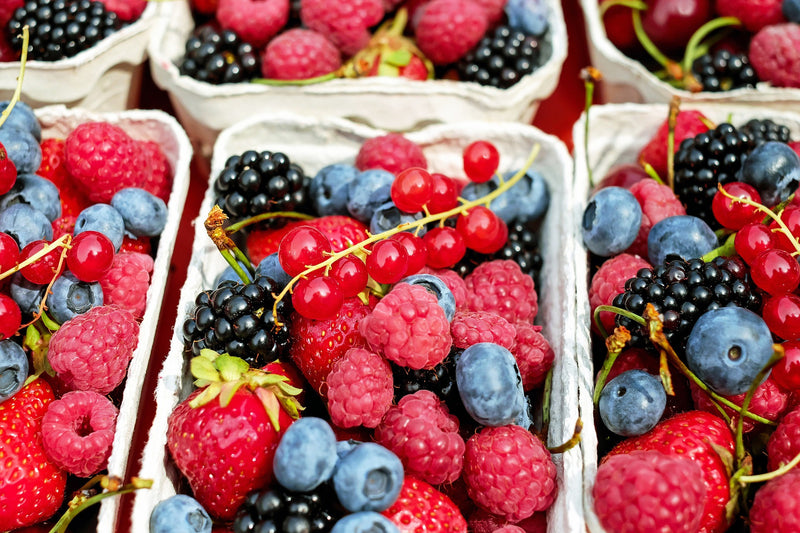 5 Common Edible Berries