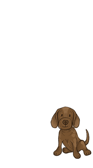 pet_dog_brown