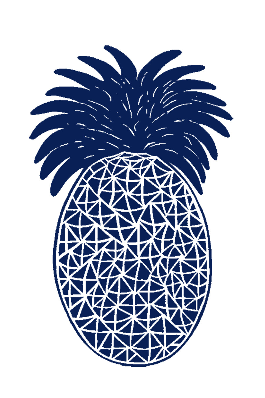 12 Art Note Cards-Navy Pineapple  4x6
