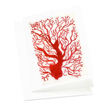 Set of 6 Art Note Cards-Sea Fan/Coral