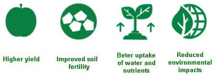 soil health, sustainable agriculture, biostimulant