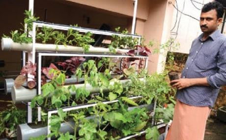 Why The Adoption Of Hydroponics In India Is Important