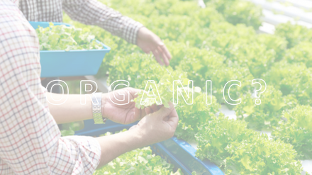 USDA Organic Certification, soil grown crops, hydroponic grown crops, organic