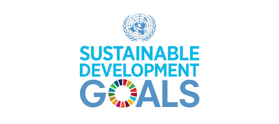 United Nations Sustainable Development Goals, UNSDG