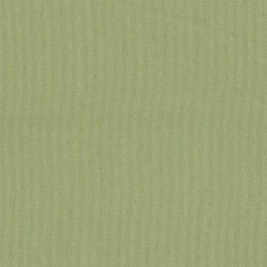 Pale Green - Endoflinefabrics