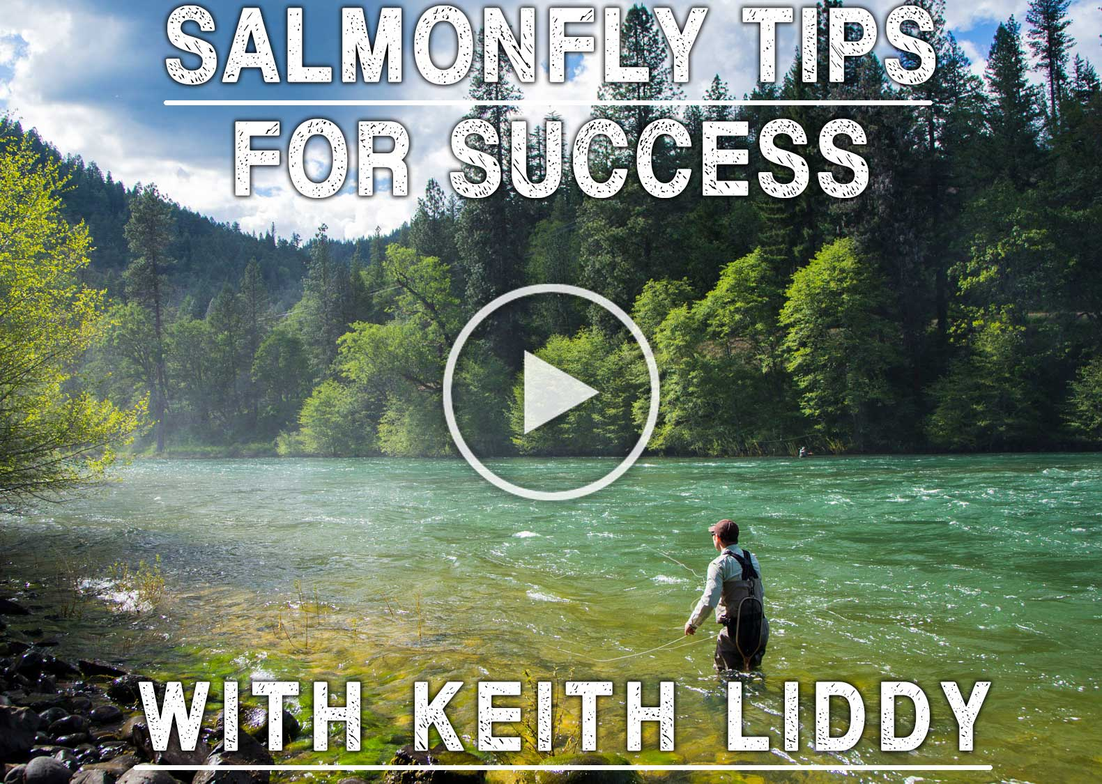 Salmonfly Tips for Success