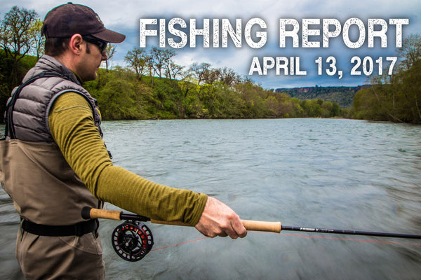 Fly Fishing Report April 13th 2017
