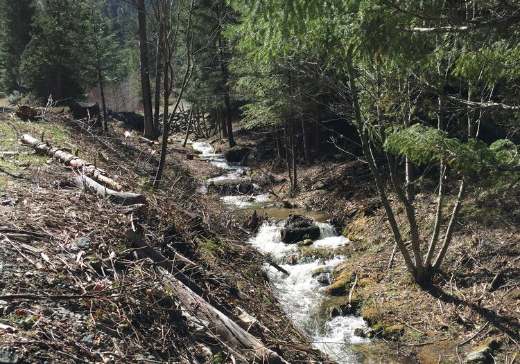 Improving Protections for Small Streams