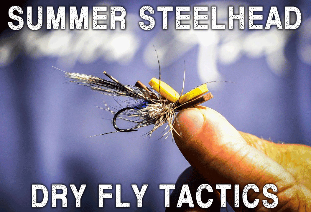 Dry Fly Tactics for Steelhead W/ Stuart Warren