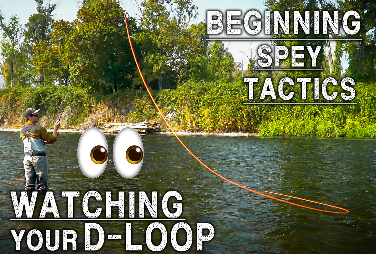 Watching Your D-Loop | Beginning Spey Tactics Ep. 7