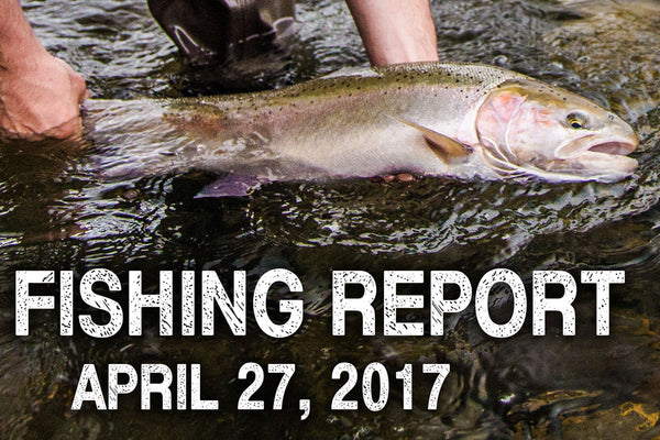 Fishing Report for April 27, 2017