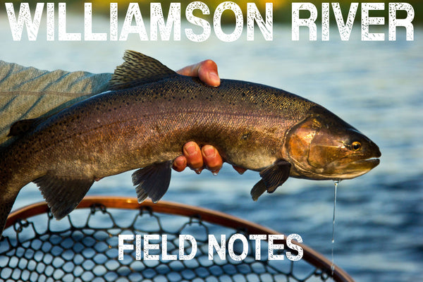 Williamson River Field Notes