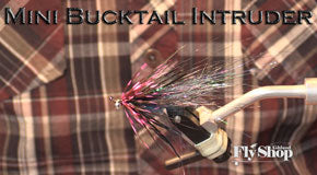 Ashland Fly Shop | Mini Bucktail Intruder