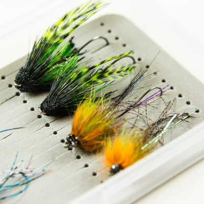 Buggy Summer Steelhead Selection