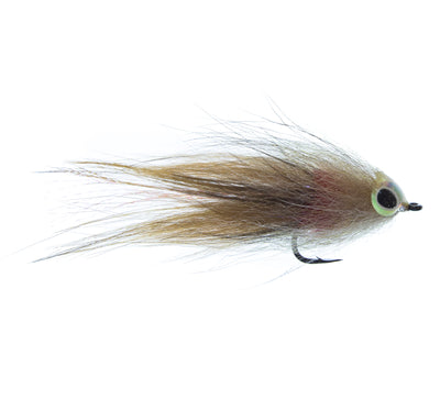 GT Brush Fly
