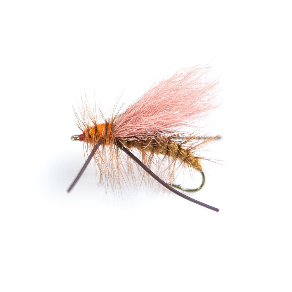Ashland Fly Shop | Chubby Norman