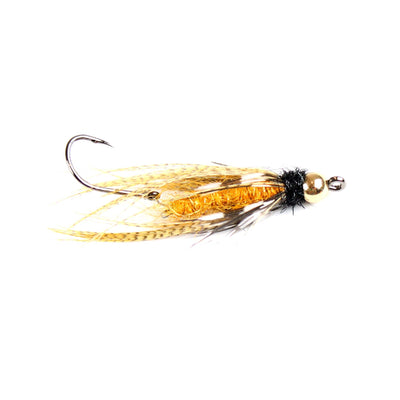 Ashland Fly Shop | Perpetrator | Golden Stone