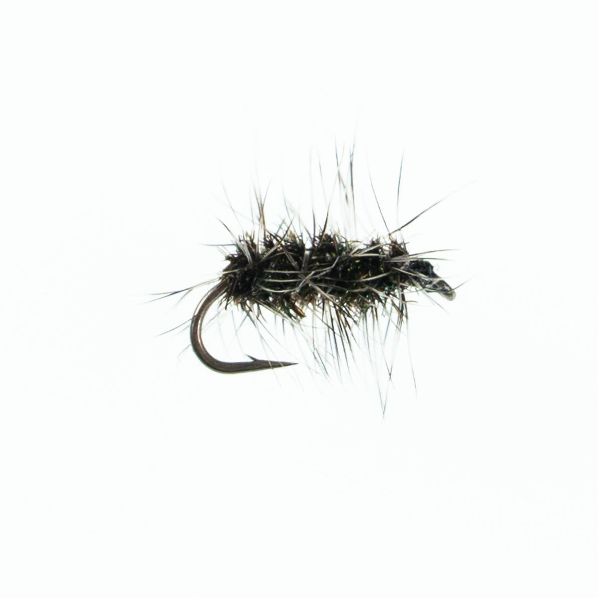 12 x Black ELK HAIR CADDIS dry trout fishing flies size 12 by Salmoflies