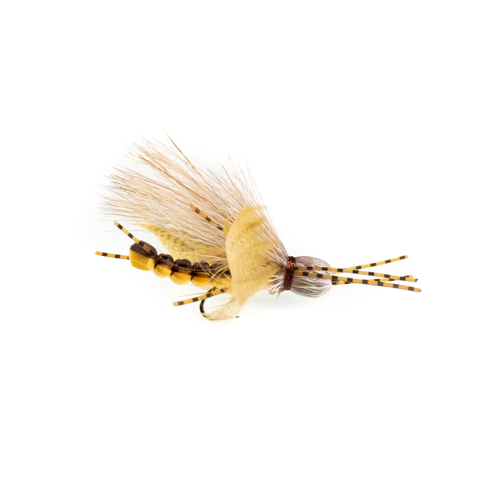 flutter bug golden