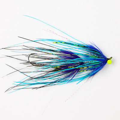 Rhea Intruder-Blue/Purple